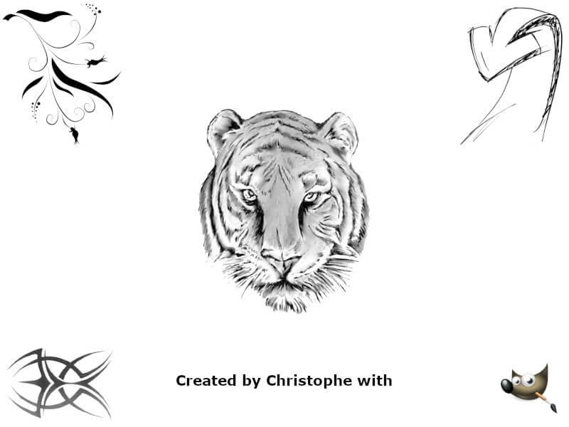 Vignette - Pourquoi aimez-vous créer ce que vous créez