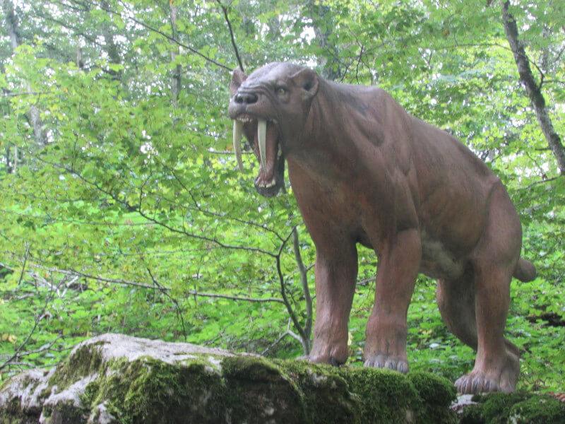 Un mammifère disparu du Préhisto Parc