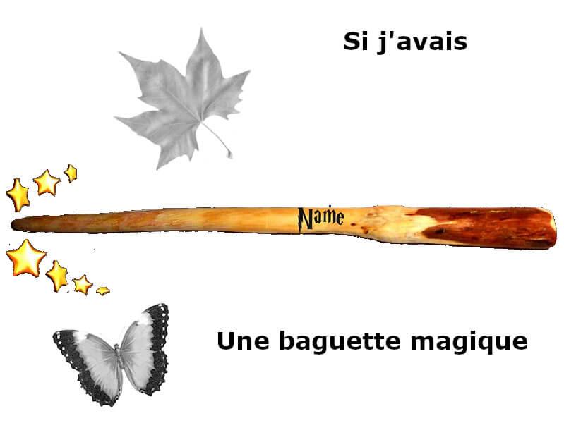 Vignette - Si j'avais une baguette magique